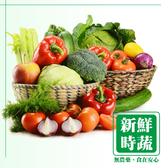 【雙12前慶超值箱】有機認證蔬菜任選箱(10入/箱) 有機蔬菜 蔬菜 青菜 蔡