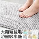 防滑吸水腳踏墊(40x60) 浴室吸水墊 吸水地墊 防滑吸水 家用臥室浴室門口 衛生間地墊