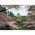 【台製拼圖】浪漫風景-日本櫻花-古城 (520片) 52-598