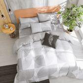 床包薄被套組 雙人特大 天絲 萊塞爾 佛倫斯[鴻宇]台灣製2132