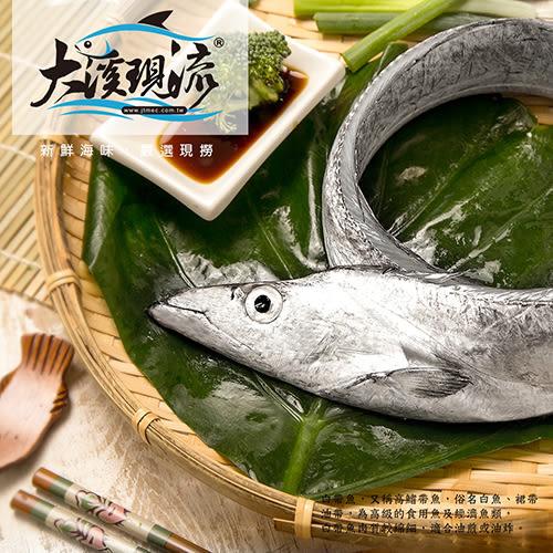 宜蘭『大溪漁港』漁船現撈 野生白帶魚 ( 小尾 100g±10% 尾 )【大溪現流】