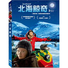 北海鯨奇DVD 瑞典馬爾默國際兒童影展/...