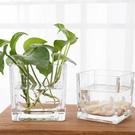簡約正方形水培玻璃器皿透明方缸綠蘿睡蓮銅錢草水培花盆玻璃花瓶