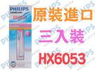 HX6053 敏感標準刷頭