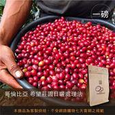 現烘【咖啡綠商號】哥倫比亞希望莊園日曬處理法(一磅)