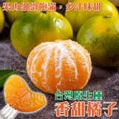 【果農直配】台灣原生種香甜橘子X10顆(180克/±10%/顆 )