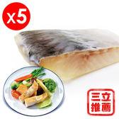 【鱘寶】鱘龍菲力魚排超值組-電電購