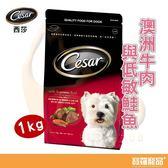 西莎Cesar 精緻乾糧 澳洲牛肉與低敏鮭魚 1kg【寶羅寵品】
