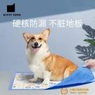 店家推薦KittyYoyo卡通狗狗尿墊加厚除臭小藍框尿片尿不濕寵物貓咪尿墊吸水墊【小獅子】