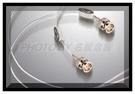 《名展影音》專屬的序號與認證~荷蘭 Crystal Cable 數位線 1.5米 Reference Diamond