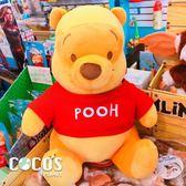 正版 迪士尼 小熊維尼 維尼 維尼熊 娃娃抱枕 COCOS GL800