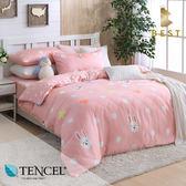 天絲床包兩用被四件式 特大6x7尺 可愛精靈  100%頂級天絲 萊賽爾 附正天絲吊牌 BEST寢飾