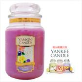 YANKEE CANDLE 香氛蠟燭-花卉糖果(買623g送104g)