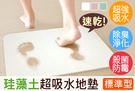 貝比幸福小舖【91088-3A】標準型-珪藻土超強吸水速乾地墊/腳踏墊/浴墊 除臭防霉 浴室用品