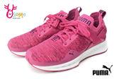 PUMA女運動鞋 針織鞋面 襪套式 IGNITE evoKNIT Lo Jr慢跑鞋I9598#粉紅◆OSOME奧森鞋業
