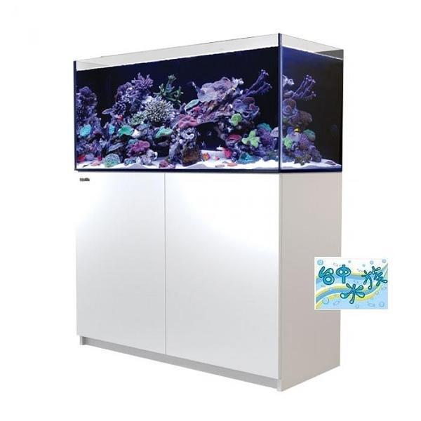 {台中水族}以色列原裝Red Sea -REEFER 350珊瑚礁岩水族套缸(白)  特價 120*53*50cm 超白玻璃12mm