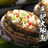 巨肥鮮美大鮑魚 *1包組( 800g±10%/包 )( 10顆/包 )