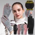 德絨冬季保暖手套 觸控手套 觸頻手套 DS102 冬季手套 保暖手套 女士手套