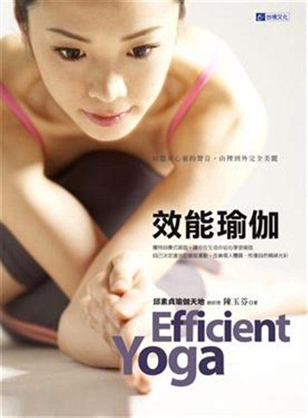 (二手書)效能瑜伽 Efficient Yoga