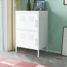 FDW【HS2T】免運現貨*美式雙門櫃/置物櫃/展示櫃/收藏櫃/辦公櫃/儲藏櫃