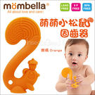 ✿蟲寶寶✿【Mombella】萌萌小松鼠...