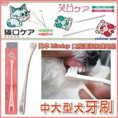 *WANG*日本 Mind Up《中大型犬用牙刷》特殊刷頭傾斜15度,更容易刷牙 (大)