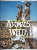 【書寶二手書T3/動植物_QHW】South African Animals in the Wild_Anthony