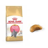 寵物家族-法國皇家BSK38英國短毛幼貓專用飼料2kg