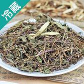 【養生茶飲】仙草茶50G/包【愛買冷藏】