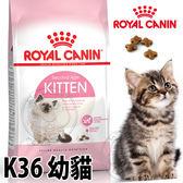 【培菓幸福寵物專營店】法國皇家K36《幼貓》飼料-10kg