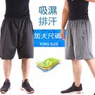 CS衣舖 32-52腰 大尺碼 吸濕排汗 極度快乾 運動短褲 伸縮腰圍 兩色 #8066