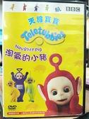 挖寶二手片-B06-045-正版DVD-動畫【天線寶寶:淘氣的小豬】-國英語發音(直購價)