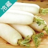 【嚴選】鮮甜進口白蘿蔔1條(600G±5%/條)【愛買冷藏】