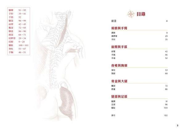 肌力與伸展動作詳解:人體解剖全書附冊