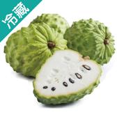 台東鳳梨釋迦(550G±5%)/粒【愛買冷藏】