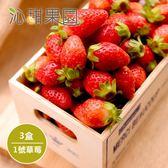 沁甜果園SSN.苗栗大湖草莓-1號果(共3盒)﹍愛食網