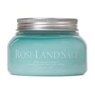 【日喬恩】玫瑰島 海鹽 冰沙霜 350g 買就送三麗鷗護唇膏