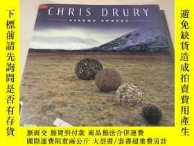 二手書博民逛書店Chris罕見Drury Silent SpacesY28718