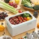 日本果蔬清洗機家用超聲波消毒清洗機水果海鮮食材凈化機全自動 快速出貨 快速出貨