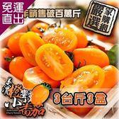 預購 -家購網嚴選 美濃橙蜜香小蕃茄 連七年總銷售破百萬斤 口碑好評不間斷3斤/盒x3【免運直出】