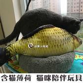 逗龍貓毛絨布 含龍貓薄荷龍貓咪鯉魚陪伴逗龍貓大號 聖誕禮物熱銷款