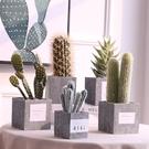 現代簡約多肉裝飾盆栽辦公桌擺件裝飾品可愛...