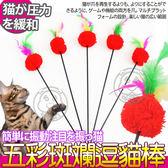 【培菓幸福寵物專營店】DYY》五彩斑斕毛絨球羽毛逗貓棒-(桿長約50cm)