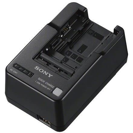 SONY 充電器 BC-QM1