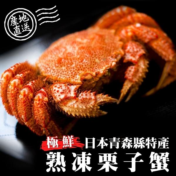 【買1送1】日本熟凍栗子母蟹共2隻(100g-130g±10%/隻)