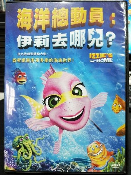 挖寶二手片-B04-正版DVD-動畫【海洋總動員:伊莉去哪兒?】-啟程遨遊多采多姿的海底世界(直購價)