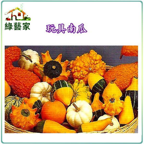 【綠藝家】P03.玩具南瓜種子(小玩具)10顆