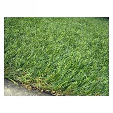 人造草皮30X30公分 造景佈置 美化環境