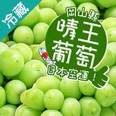 日本晴王綠葡萄/串(600g±5%/串)【愛買冷藏】