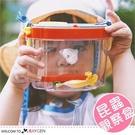 兒童背帶式植物昆蟲觀察盒 收集盒 放大鏡